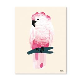 Pink_cockatoo_michelle_carlslund_web_c949f18e-678a-440b-a4bf-27c5c395c26b